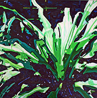 Crinum-Changes,-36-x-36,-acrylic-on-----canvas,-Zanetti_edited-1